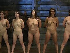 Five Naked Girls Are Forced To Reach Orgasm In Hardcore BDSM Video