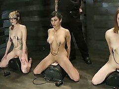 Seven Slave Intake YL Extreme Bondage, Exhausting Exercise, & Overwhelming Orgasms Expose the Weak